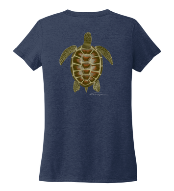 Colin Thompson, Turtle, Women's V-neck T-shirt in Slate Black