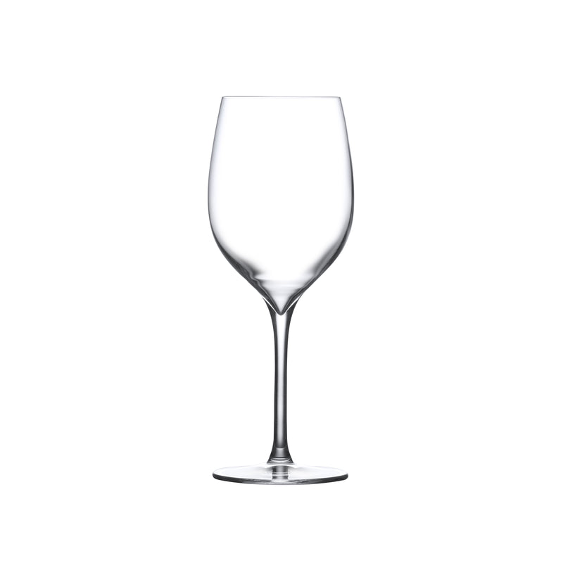Terroir@Set of 2 White Wine Glasses