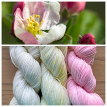 Load image into Gallery viewer, Serenity Sock 80/20  Apple Blossom Set