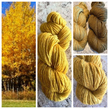 Load image into Gallery viewer, Bella BFL/Gotland Fingering Autumn Aspens