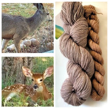 Load image into Gallery viewer, Blissful BFL Sock Set Doe/Fawn