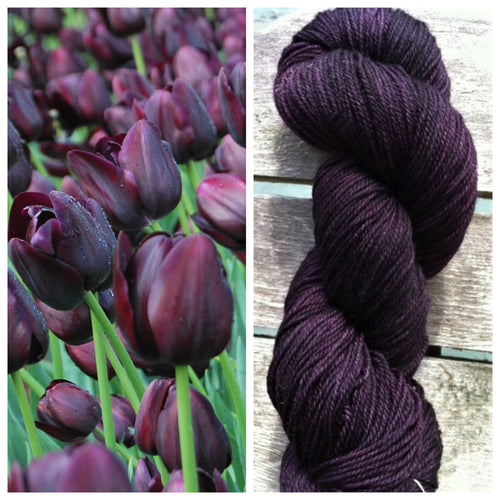 Serenity Sock 80/20  Queen of the Night Tulip