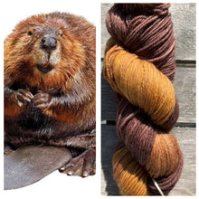 Load image into Gallery viewer, Delightful DK 75/25 The Beavers