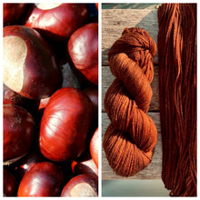 Load image into Gallery viewer, Delightful DK 75/25 Conkers