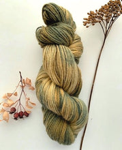 Load image into Gallery viewer, Countryside DK / Light Worsted New Growth