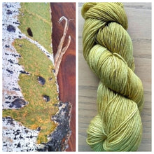 Load image into Gallery viewer, Delightful DK 75/25 Wood Moss