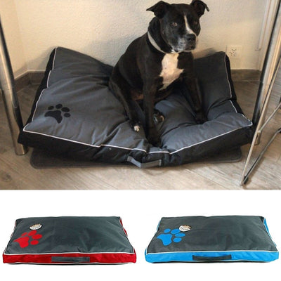 image of a dog sitting on a waterproof dog bed