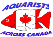 Aquarists Across Canada