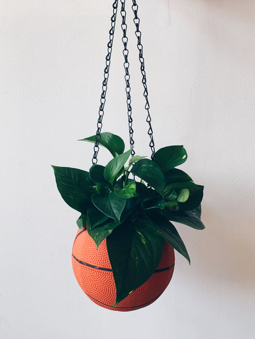 Basketball Hanging Pot