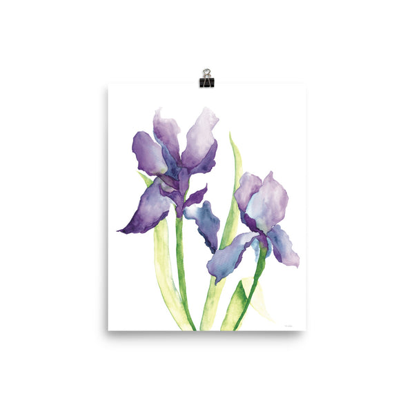 Watercolor Irises | Art Print