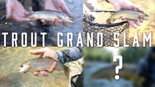 Fly Fishing for the Trout Grand Slam - Utah