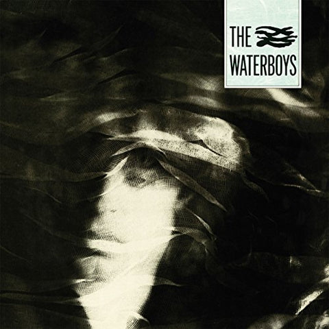Waterboys The Waterboys LP 0825646310814 Worldwide Shipping