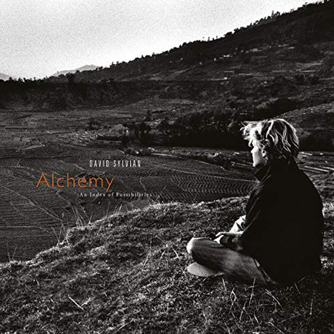 David Sylvian Alchemy: An Index Of Possibilities LP