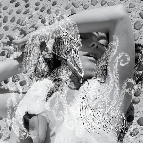 Björk Vespertine 2LP 5016958046019 Worldwide Shipping