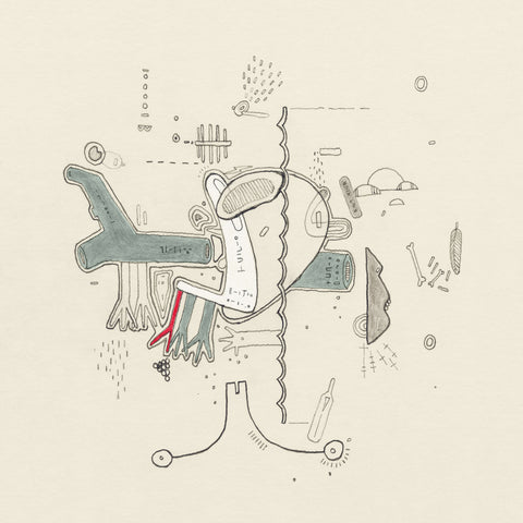 Frightened Rabbit Tiny Changes: A Celebration Of The Midnight Organ Fight Sister Ray