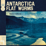 Flat Worms Antartica 181484201816 Worldwide Shipping