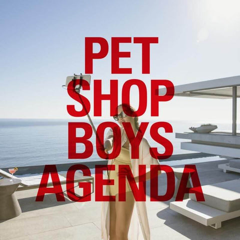 Pet Shop Boys Agenda Sister Ray