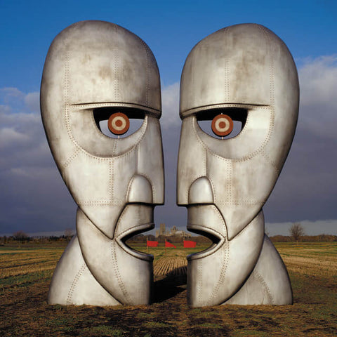 Pink Floyd The Division Bell Sister Ray