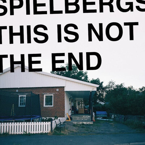 Spielbergs This Is Not The End Sister Ray