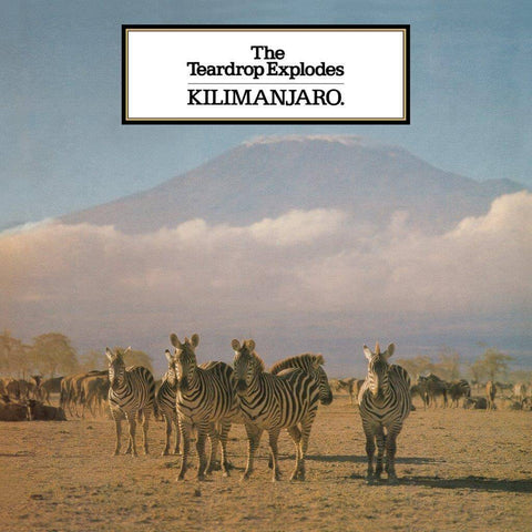 The Teardrop Explodes Kilimanjaro Sister Ray