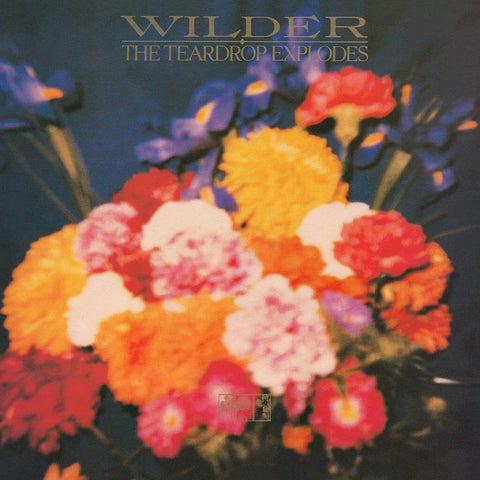 The Teardrop Explodes Wilder Sister Ray