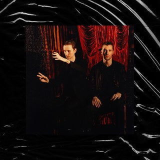 These New Puritans Inside The Rose Cover Sister Ray