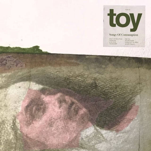 Toy Songs Of Consumption Sister Ray