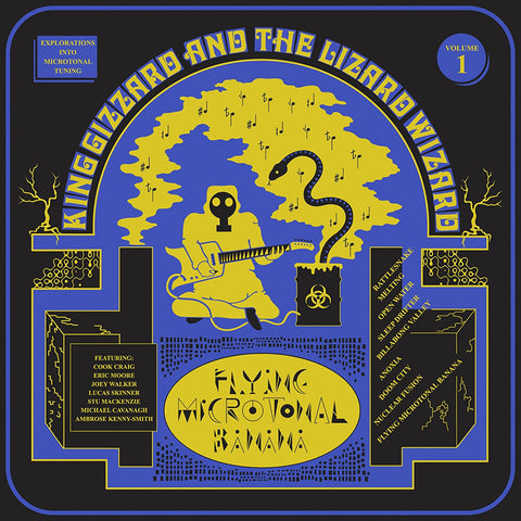 King Gizzard & The Lizard Wizard Flying Microtonal Banana