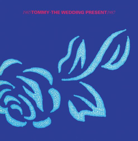 the wedding present tommy sister ray