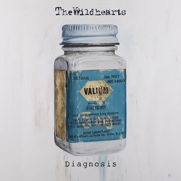 the wildhearts diagnosis sister ray