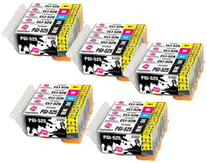 INK INSPIRATION® Replacement for Canon PGI-525 CLI-526 Ink Cartridges 25-Pack, Use with Canon Pixma MG5350 MG5250 MG5150 MG6150 MG6250 iX6550 iP4850 iP4950 MX895 MX885 MG8150 MG8250