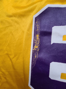 Vintage Mens Champion Los Angeles Lakers Eddie Jones Jersey Size 40-Gold