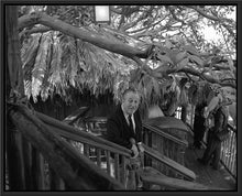 "Load image into Gallery viewer, ""Walt at Swiss Family Tree House"" from Disney Photo Archives"