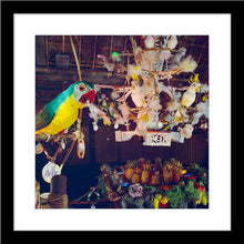 "Load image into Gallery viewer, ""Pierre in Walt Disney's Enchanted Tiki Room"" from Disney Photo Archives"