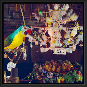 """Pierre in Walt Disney's Enchanted Tiki Room"" from Disney Photo Archives"