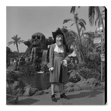 "Load image into Gallery viewer, ""Captain Hook"" from Disney Photo Archives"