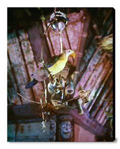 """José in Walt Disney's Enchanted Tiki Room"" from Disney Photo Archives"