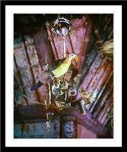 "Load image into Gallery viewer, ""José in Walt Disney's Enchanted Tiki Room"" from Disney Photo Archives"