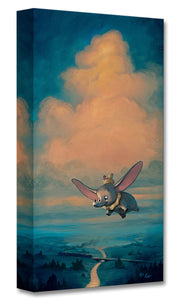 """Joy of Flight"" by Rob Kaz"