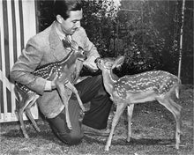 "Load image into Gallery viewer, ""Walt & Deer"" from Disney Photo Archives"