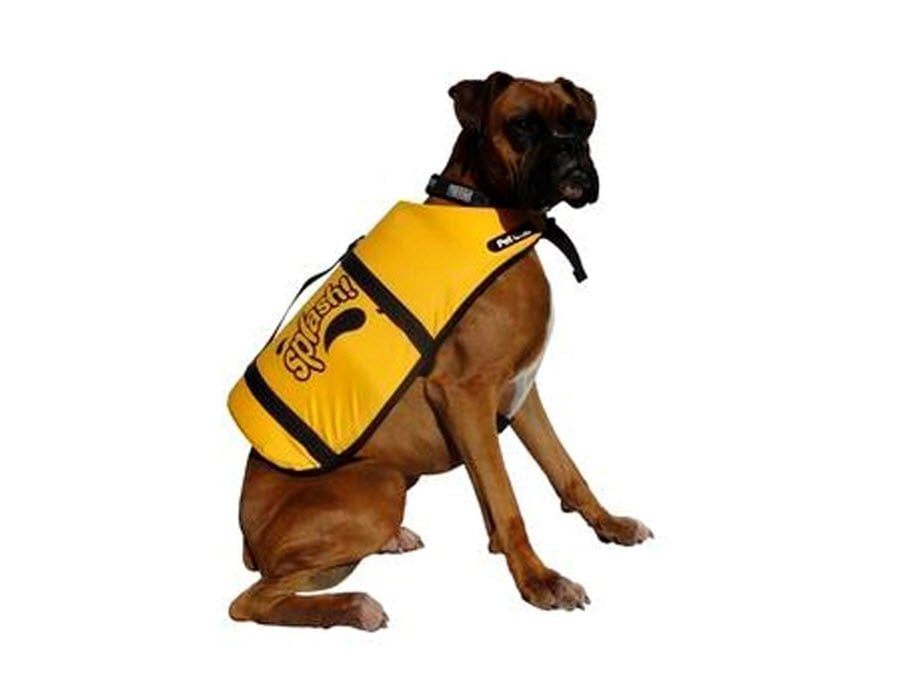 Yellow floatation lifejacket worn by a dog