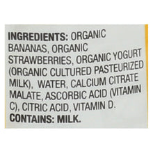 Load image into Gallery viewer, Earth's Best Organic Fruit Yogurt Smoothie - Strawberry Banana - Case Of 12 - 4.2 Oz.