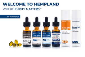 CANNABITOL® Full-Spectrum CBD Oil—Enhanced With ECS5™ 500mg - Introductory  Pricing!