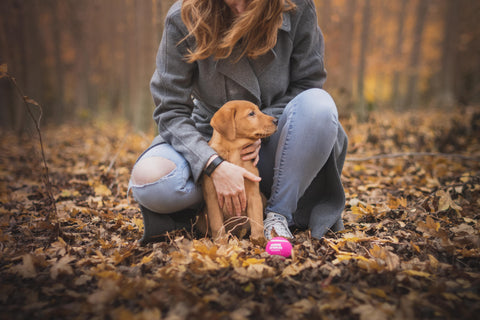 woman kneeling behind and embracing her dog in a leafy forest