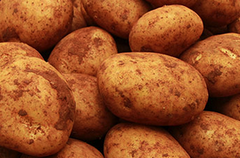 Otway red ZPotatoes 500gms