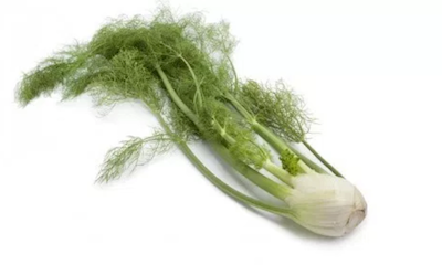 Fresh Herbs - Fennel Bulb