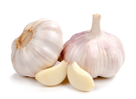 organic-purple-garlic