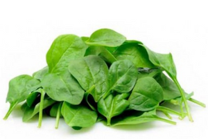 Baby Spinach - 100gm