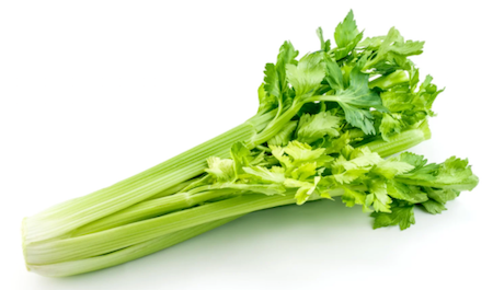 Celery - On Special!