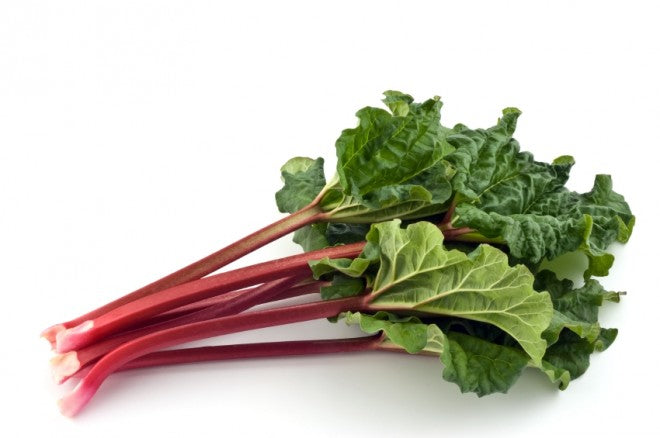 organic-rhubarb-bunch